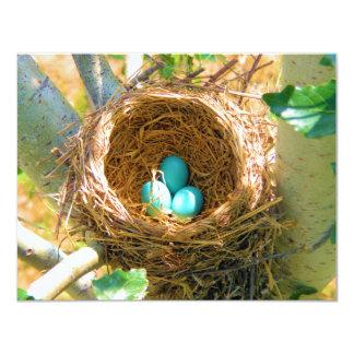 裏庭の木の巣のロビンの卵 10.8 X 14 インビテーションカード