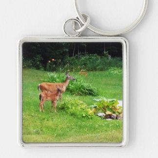 裏庭の雌ジカそして子鹿 キーホルダー