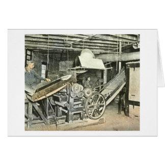 製材所の労働者の幻灯のスライド カード