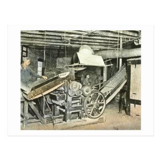 製材所の労働者の幻灯のスライド ポストカード