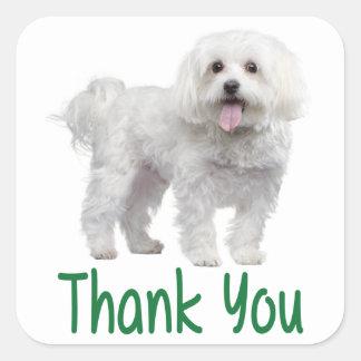 西の高地テリアの小犬のステッカーありがとう スクエアシール