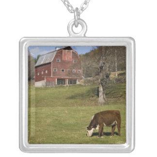 西のFairlee、ヴァーモントの農場の牛。 血 シルバープレートネックレス