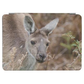 西オーストラリア、パースのYanchepの国立公園 iPad Air カバー