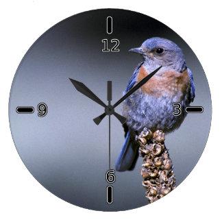 西部のブルーバードの時計(数と) ラージ壁時計