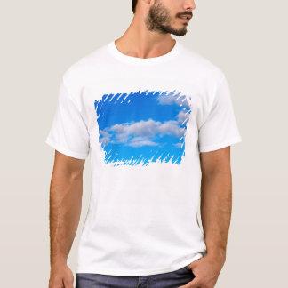 西部の南極上の積雲 Tシャツ