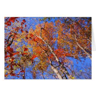 西Mt.の秋のHot Springsの国立公園のギフト カード