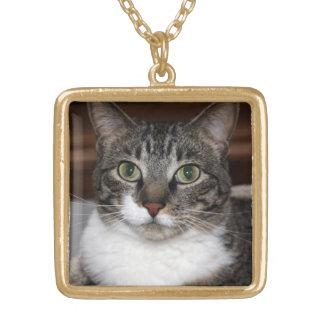 見ている虎猫猫写真のネックレス ゴールドプレートネックレス
