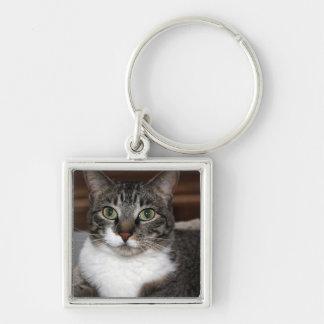 見ている虎猫猫Keychain キーホルダー