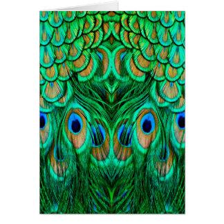 見事な孔雀の羽 カード