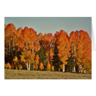 見事な秋の木の挨拶状 カード