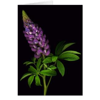 見事な紫色 グリーティングカード