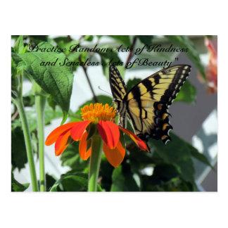親切さの郵便はがき-蝶の偶然の事故 ポストカード