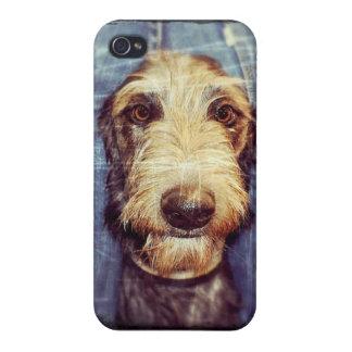 親愛な猟犬 iPhone 4/4Sケース