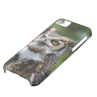 角状フクロウ iPhone5Cケース