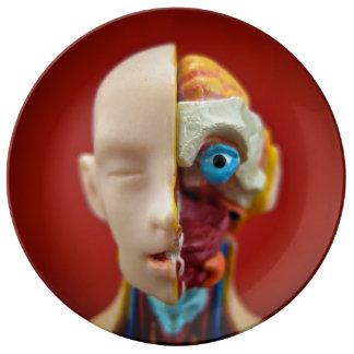 解剖人のプレート 磁器プレート