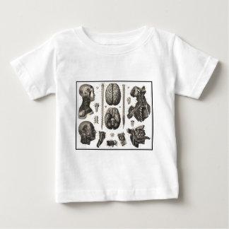 解剖頭脳および多く ベビーTシャツ