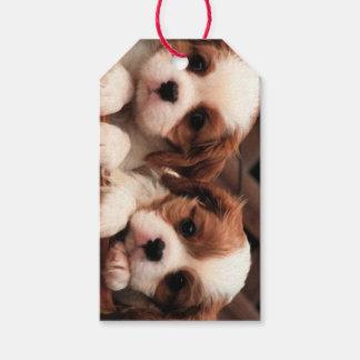 言葉遣いのギフトカードが付いている子犬の写真 ギフトタグ
