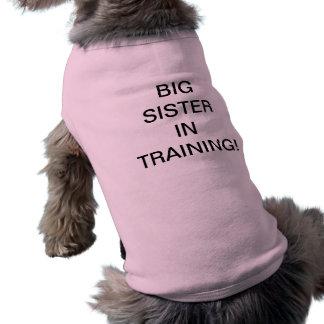 訓練の姉 ペット服