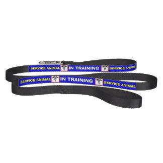 訓練サービス動物の犬用リーシュのケリュケイオン ペットリード