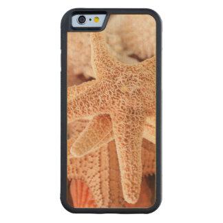記念品2として販売される乾燥された海星 CarvedメープルiPhone 6バンパーケース