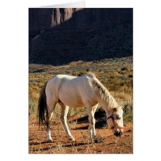 記念碑の谷の馬 カード