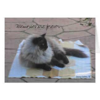 記憶猫のメッセージカード ノートカード