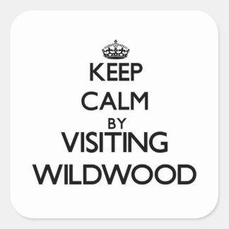 訪問のWildwoodニュージャージーによって平静を保って下さい スクエアシール