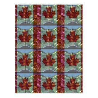 誇りを持ったなカナダのカエデの葉パターン ポストカード