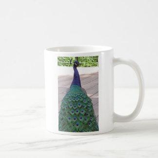 誇りを持ったな孔雀 コーヒーマグカップ