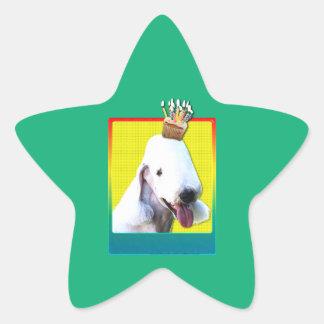 誕生日のカップケーキ- Bedlington 星シール