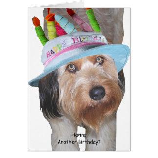 誕生日の帽子のLabradoodle カード