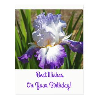 誕生日の郵便はがきまたは白いおよび紫色のアイリスまたは最高のな願い ポストカード