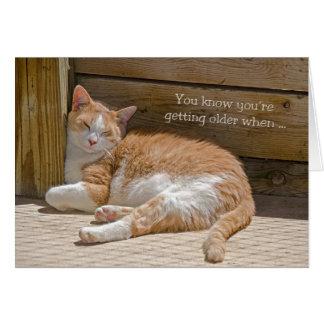 誕生日猫の昼寝 カード