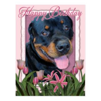 誕生日-ピンクのチューリップ-ロットワイラー-ハーレー ポストカード