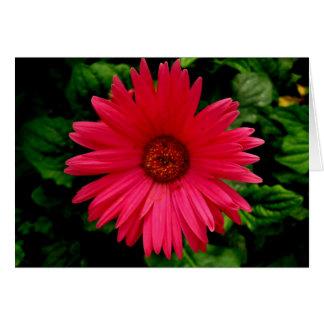 誕生日-ピンクの花小さい カード