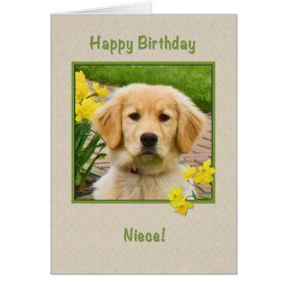 誕生日、姪、ゴールデン・リトリーバー犬、ラッパスイセン カード