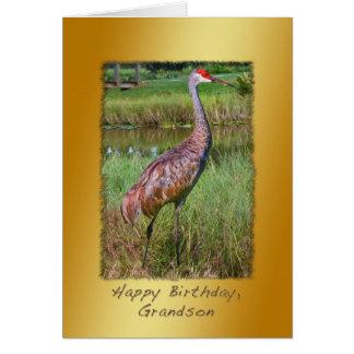 誕生日、孫、Sandhillクレーン鳥 カード