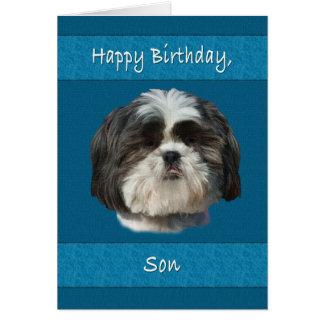 誕生日、息子、シーズー(犬)のTzu犬 カード