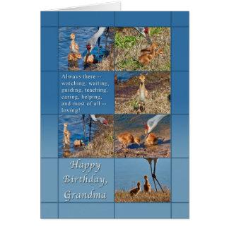誕生日、祖母、ベビーのSandhillクレーン カード