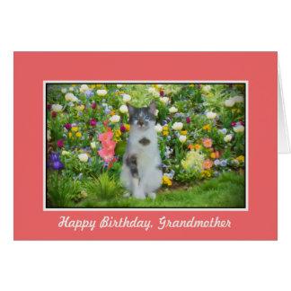 誕生日、祖母、花間の猫 カード