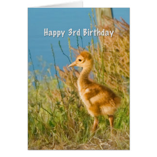 誕生日、第3のベビーのSandhillクレーン カード