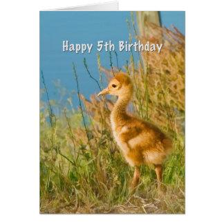 誕生日、第5のベビーのSandhillクレーン カード