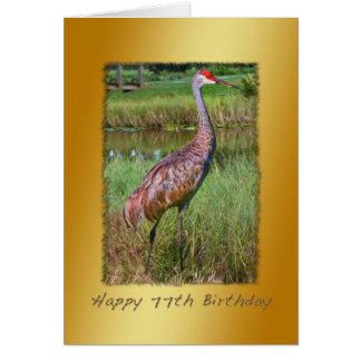 誕生日、第77のSandhillクレーン鳥 カード