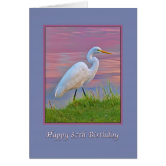 誕生日、第87の日の出で散歩している素晴らしい白鷺 カード
