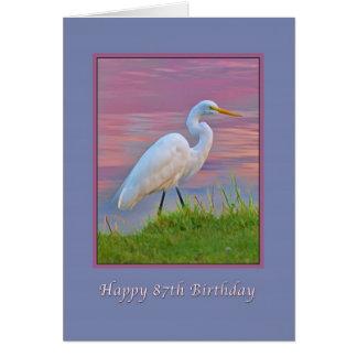 誕生日、第87の日の出で散歩している素晴らしい白鷺 グリーティングカード