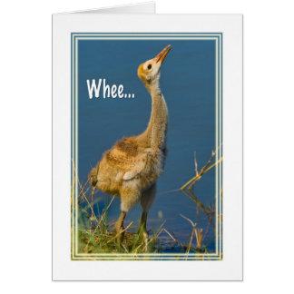 誕生日、Sandhillクレーンひよこカード カード