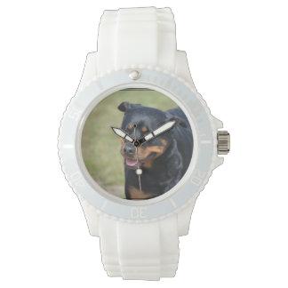 誠実なロットワイラー 腕時計