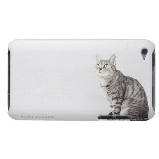 調べている猫 Case-Mate iPod TOUCH ケース