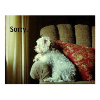 """謝罪は""""残念""""完全に言いますそれをcard~when ポストカード"""