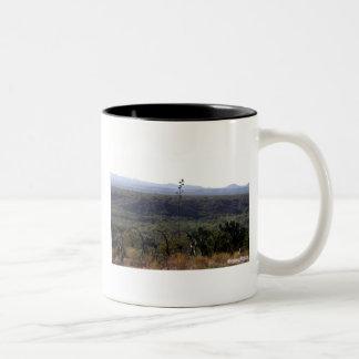 議会、アリゾナの眺め ツートーンマグカップ